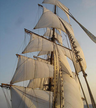 image of sail_above